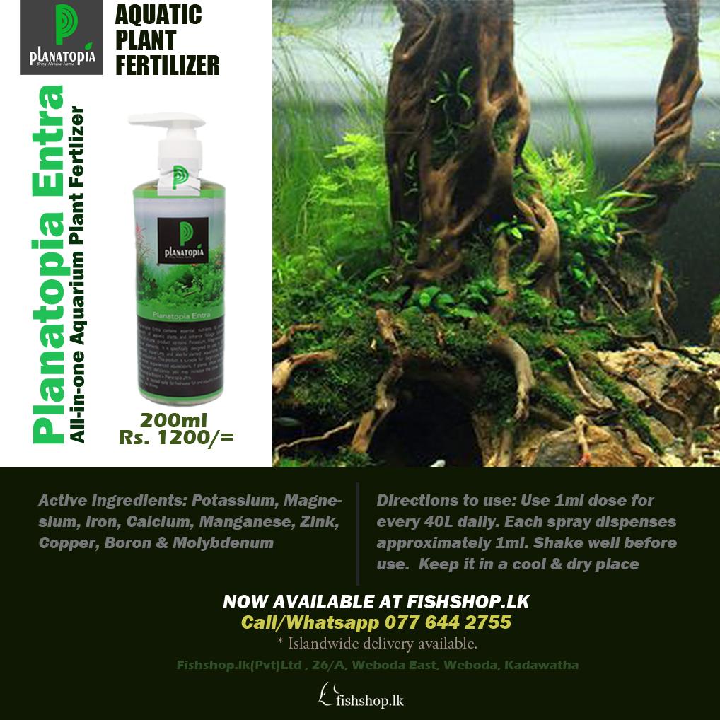 Planatopia Entra fertilizer 200ml