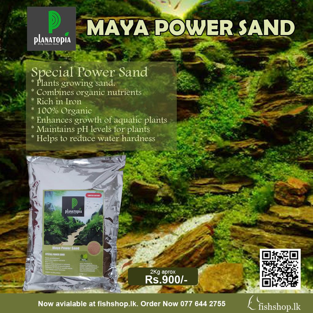 Planatopia Maya Sand
