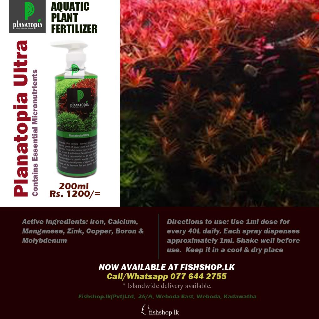 Planatopia Ultra fertilizer 200ml